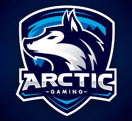 Artic Gaming